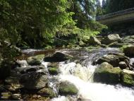 Antýgl most