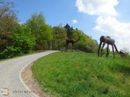 Botanická zahrada - k lesním biotopům