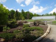 Botanická zahrada - mokřady