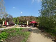Botanická zahrada - restaurace