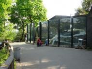 Zoo Praha lední medvědi