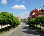 Praha z pohledu milovníků přírody