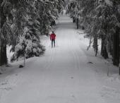 Lyžařské areály a nástupiště běžeckých tras - Šumava