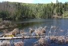 Prášilské jezero (mimo trasu)
