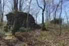 Zřícenina hradu Kokšín