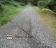 Cesta nad rozcestím Stateček