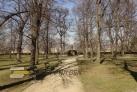 Socha v Parku