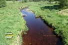 Lávka přes Hamerský potok