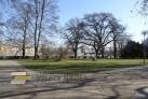 Pohlad do parku na Kampě od Werichovy vily