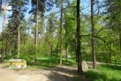 Lesní biotopy